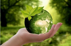 Консултации по всички компоненти на околната среда